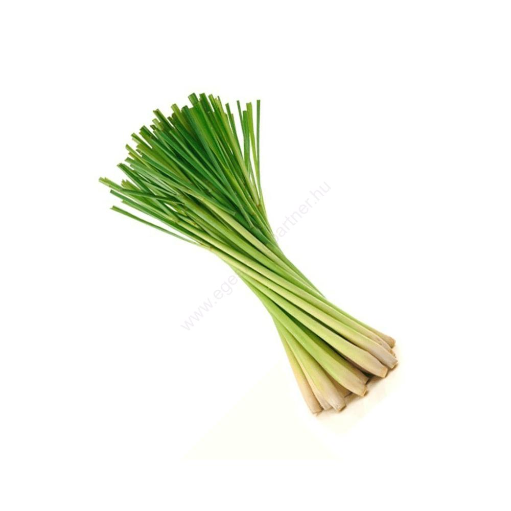 Citromfű (Lemongrass) illóolaj - doTERRA - 15ml