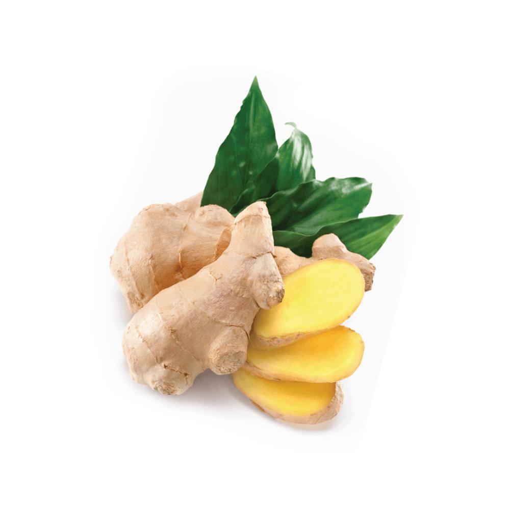 Gyömbér (Ginger) illóolaj - doTERRA -15ml
