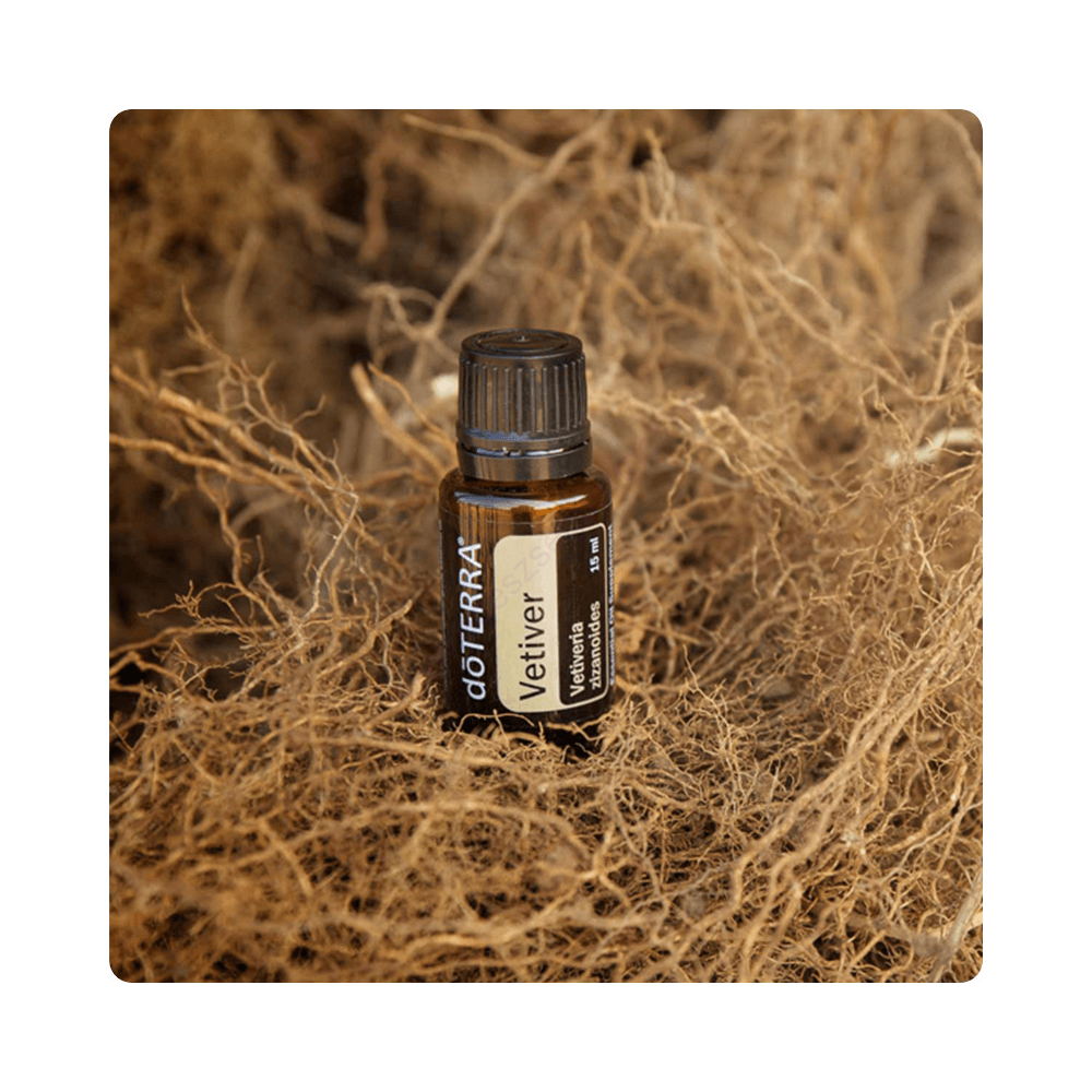 Vetiver illóolaj - doTERRA -15ml